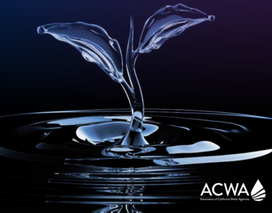 Chandler's Professionals at the 2020 ACWA Summer Virtual Conference & Exhibition